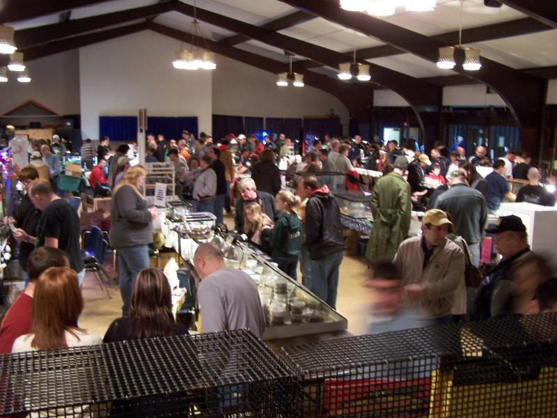 2021 Medina Spring Reptile Show and Sale